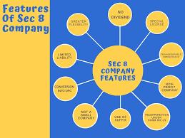 www.caindelhiindia.com; features of Section-8 company